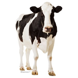 Cow-Lifesized Standup