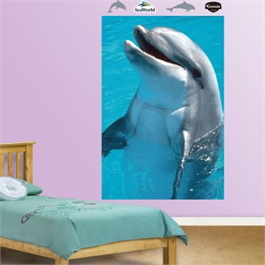 Dolphin Mural REALBIG Wall Decal