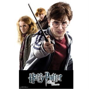 Harry, Hermione and Ron Wall Decor