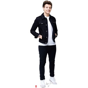 Lifesized Louis One Direction Standup