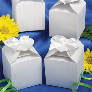 Perfectly Plain Collection Decorative Boxes White