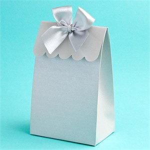 Silver  Delivered With Love  Boxes