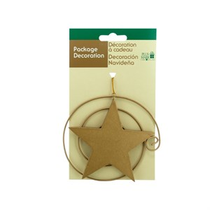 Star Gift Ornament
